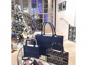 Dior booktote 购物袋大小对比
